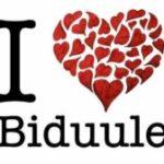 BeeZ Biduule
